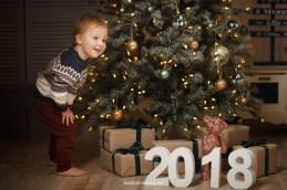 Новогодняя фотосессия 2018, мальчик-двухлетка