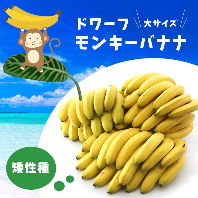 m-banana01.jpg