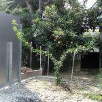 梅の木の樹形作りの方法