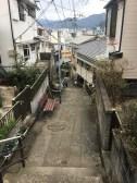 Misaki Road