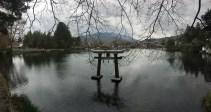 Torii in Kinrin Lake