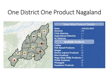 one district one product nagaland