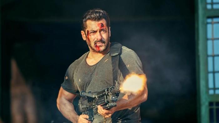 'Salman Khan is as professional as Christian Bale, Tom Hardy'