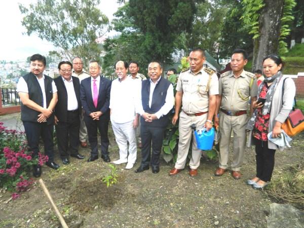 CM initiates plantation drive