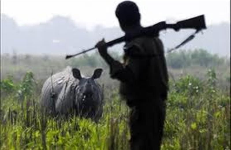 Police arrests 4 suspected rhino  poachers, including 2 from Nagaland