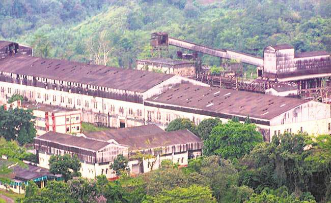 No progress in revival  of Tuli paper mill