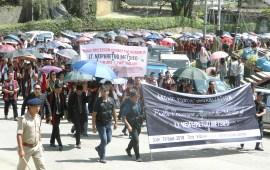 APO holds public procession against murder