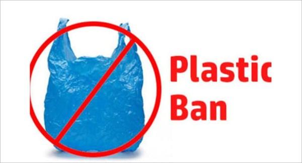 Nagaland restricts use of plastics
