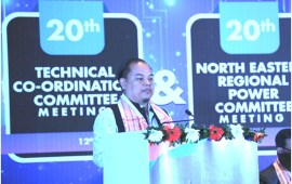 Tovihoto calls for state-of-the-art technologies  to modernize power system in NE states