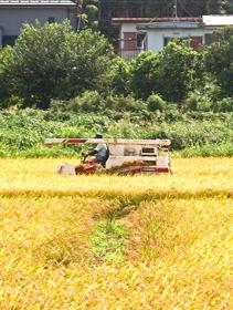 南牧村の農業生産法人設立