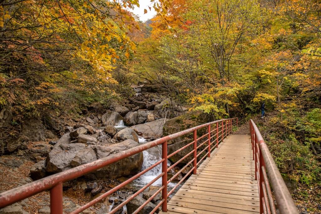 Yonago Falls