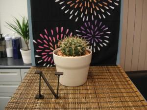 メンズサロンながさわの観葉植物2