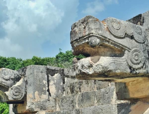 Meksykańskie węże.