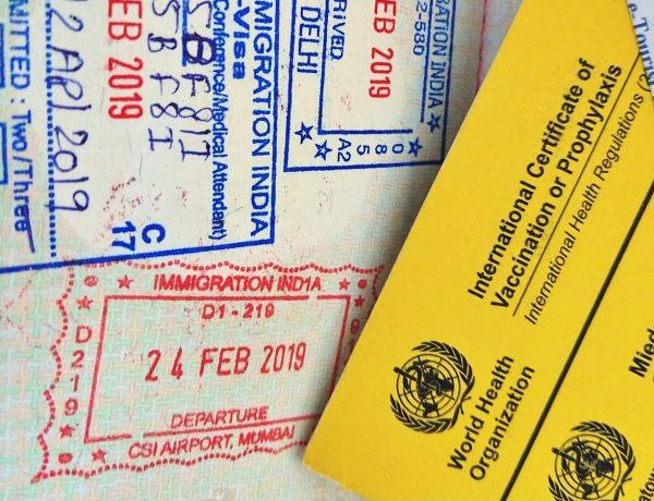 Paszport i żółta książeczka szczepień.