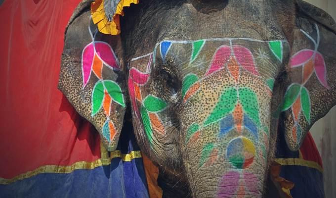 Zwiedzamy Dżajpur