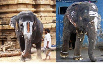 temple-elephant