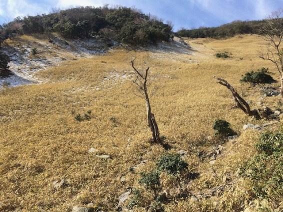 井戸田谷コース頂上直下