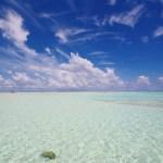 百合ヶ浜(与論島)の2017年出現時期はいつ?場所やアクセス方法をチェック!