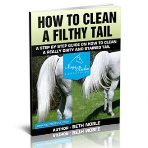 How to Clean A Filthy Tail