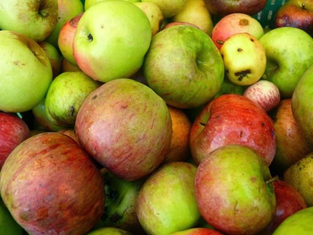 manzana-xuanina