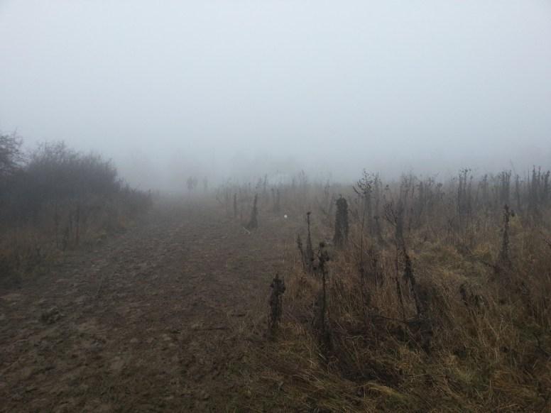 Sár, köd, kell ennél több?