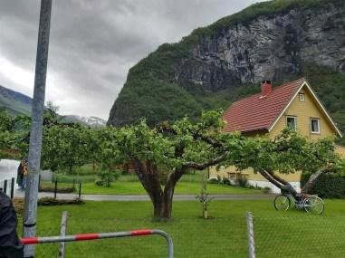 flam-fjord-22-msc-meraviglia-dxn