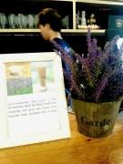 Earl Lavender Tea Latte