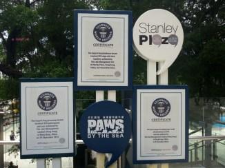 Guinness World Record Award