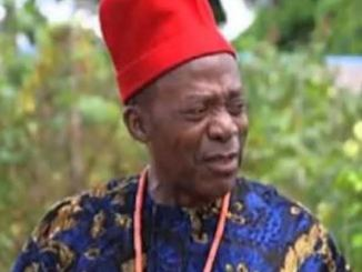 Zulu Adigwe Biography.