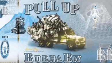 Photo of Download: Burna Boy – Pull Up
