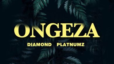 Photo of Diamond Platnumz – Ongeza