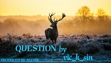Photo of Vic-K-Sin – Question