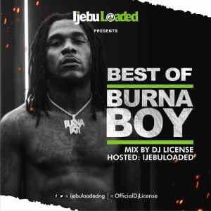 Dj License - Best Of Burna Boy Mix