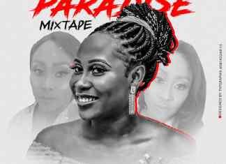 DJ Freeflex – Paradise RNB POP Mix (Foreign Mixtape)