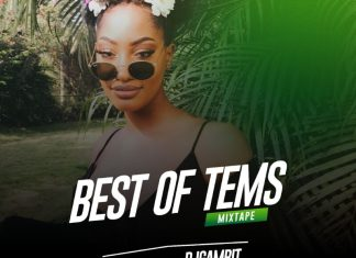 Best Of Tems DJ Mix - Best Tems Songs Mixtape 2020 - 2021