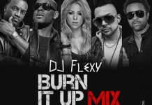 Old Foreign Popular Songs Mixtape - Throwback Burn It Up Mix