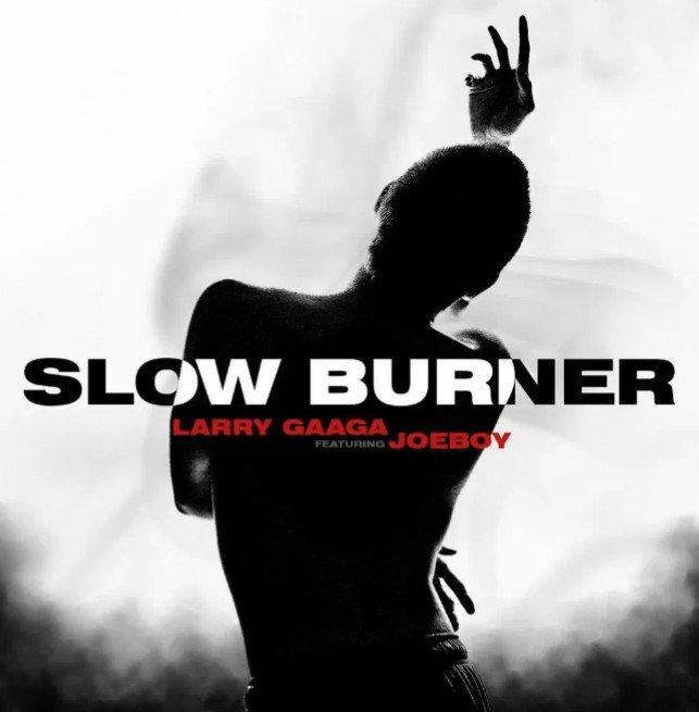Download Mp3 Larry Gaaga Ft. Joeboy – Slow Burner