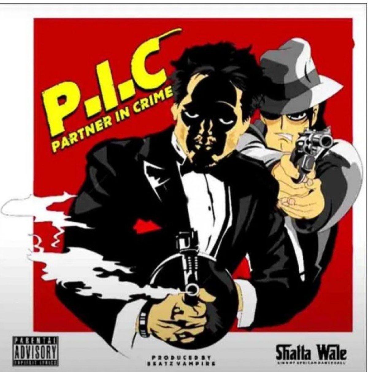 DOWNLOAD MP3: Shatta Wale – Partner In Crime (P.I.C)