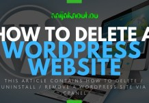 UNINSTALL OR DELETE WORDPRESS WEBSITE