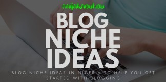 Blog niche ideas in Nigeria