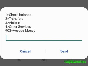 Check Access Bank Account Number (1)