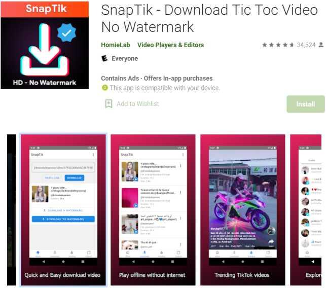 SnapTik - Download TikTok Videos without Watermark