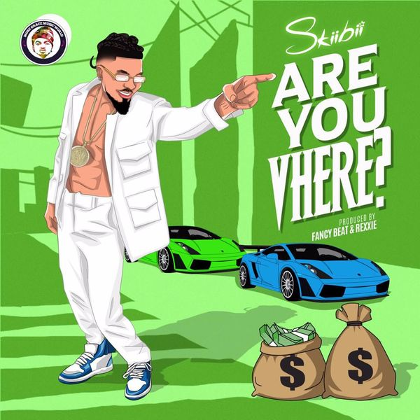 DOWNLOAD Skiibii – Are You Vhere MP3