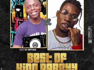 DJ Virtuous - Best of King Perryy Mix