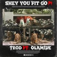 Trod Ft Olamide – Shey You Fit Go?!