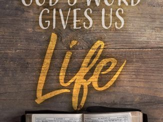 Andrew Wommack Devotional 7th January 2020