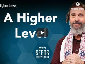Rabbi Schneider Sermon - A Higher Level