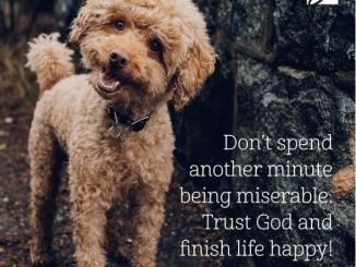 Joyce Meyer Message - Don't spend another minute being miserable