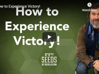 Rabbi Schneider Sermon - How to Experience Victory