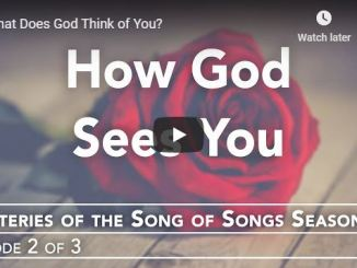 Rabbi Schneider Sermon - What Does God Think of You